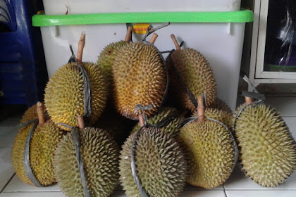 Durian Non Kolestrol, Memangnya ada?