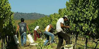 78% de la población chilena cuenta con empleos de baja calidad.