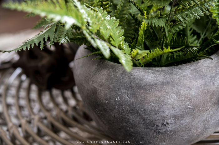Aged stone vase with ferns