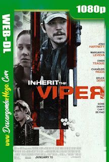 Inherit the Viper (2019) HD 1080p Latino