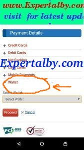 snapdeal trick to pay wallet payment page