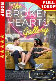 La galería de los corazones rotos (2020 )[1080p BDrip] [Latino-Inglés] [LaPipiotaHD]