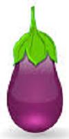 एग प्लांट एक प्रकार का बैगन है जो बतख केअंडे जैस दिखता है.
