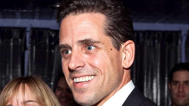 Business Partner Warned Hunter Biden That He Did Not Report $400,000 In Income From Burisma: Report