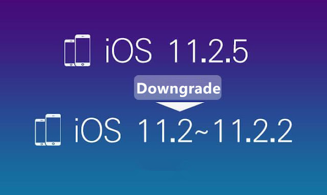 2_%25E5%2589%25AF%25E6%259C%25AC How to Downgrade iOS 11.2.5 to iOS11.2/iOS11.2.1 With iTunes? iPhone Jailbreak