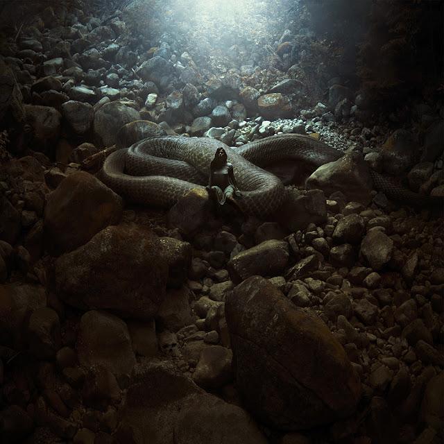 Green Pear Diaries, fotografía, foto manipulación, Michal Karcz, arte