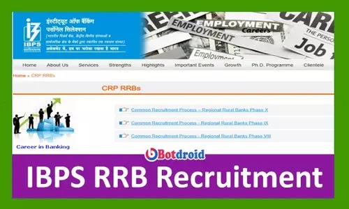 IBPS RRB Clerk Recruitment 2021 Notification Released, Apply online for Officer Scale, PO, Office Assistant, Clerk Job Vacancies
