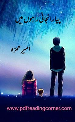 Piyaar Anjani Rahon Mein By Ameer Hamza - PDF Book
