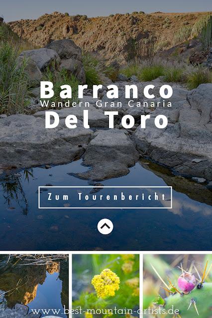 Wanderung zu den Wasserfällen im Barranco del Toro | San Agustín/Maspalomas | Wandern auf Gran Canaria 13