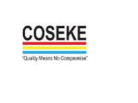 Careers and Jobs at an IT Solutions Company - COSEKE