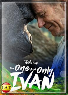 El Único y Gran Iván (2020) DVDRIP LATINO