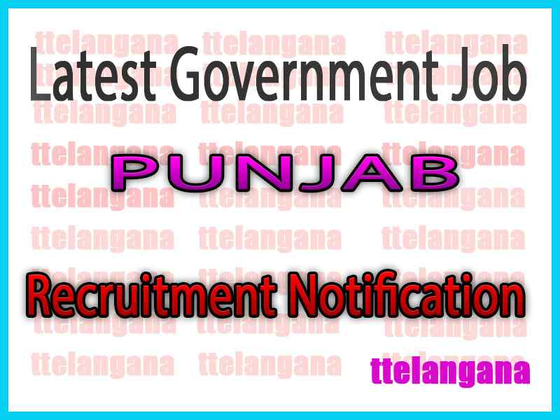 Latest Punjab Government Job Notifications