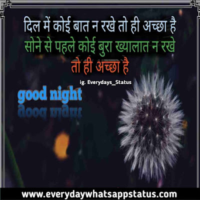 good night image shayari | Everyday Whatsapp Status | Unique 50+ good night images Quotes