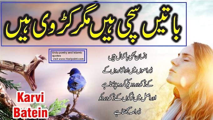 Things are true megar karvi (best Urdu quotes)