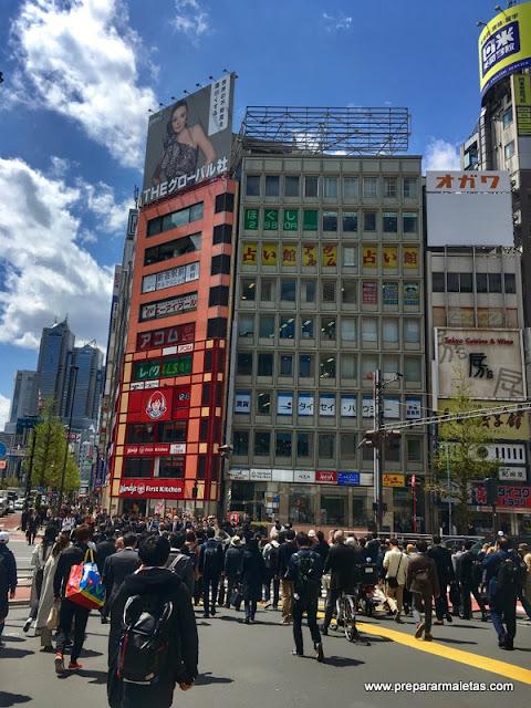 que ver en Shinjuku Tokio