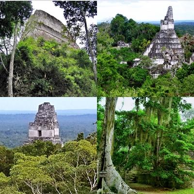 """La historia de Tikal muestra que, en su apogeo, esta ciudad poseía el poder económico y político dominante en América Central. Otras dos ciudades importantes en importancia durante la """"edad de oro de Tikal"""" fueron Palenque y Kopan. Puedes encontrar las ruinas de Palenque en el sur de México, mientras que Copán está en el oeste de Honduras."""