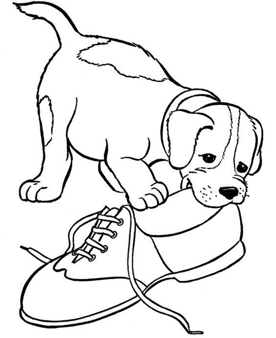 Hình tô màu con chó và chiếc giày