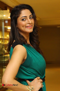 Actress Shilpi Sharma Pictures in Green Dress at D'sire Exhibition Launch  0003.jpg