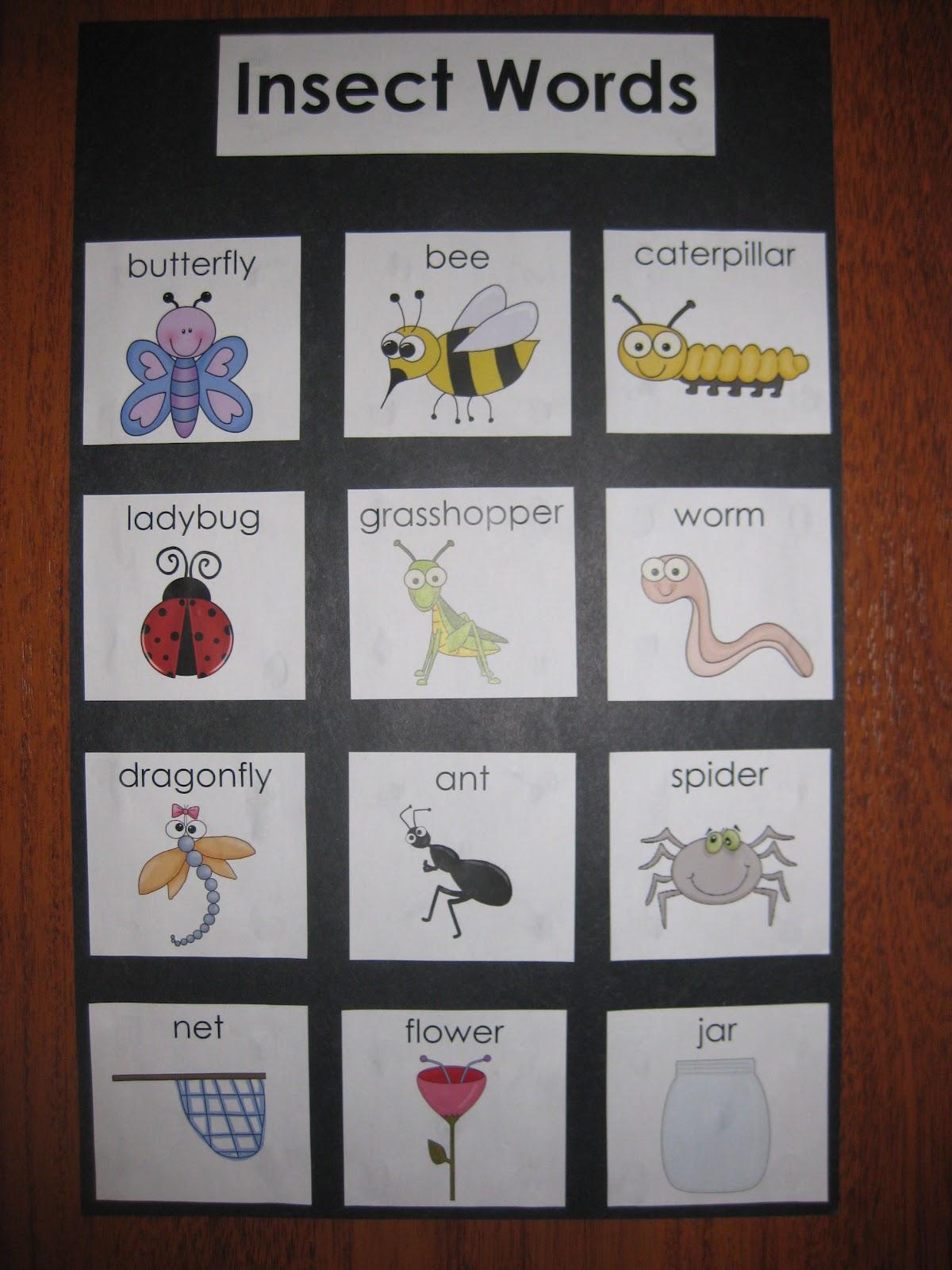 Mrs Albanese S Kindergarten Class Literacy Centers 101