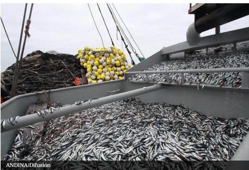 Noticias ministerio de la producci n prev buena for Ministerio de pesqueria