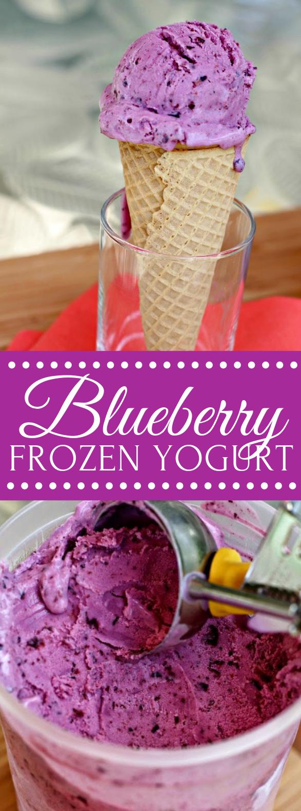 Blueberry Frozen Yogurt #desserts #summer