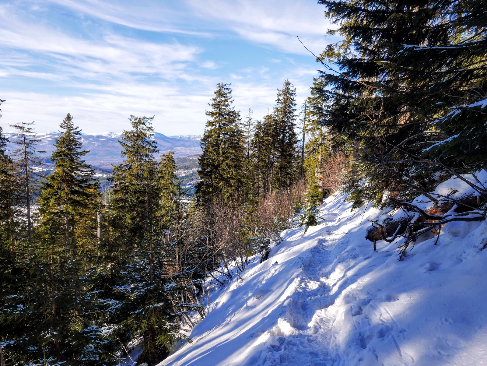 Beskid Żywiecki Romanka główny szlak beskidzki