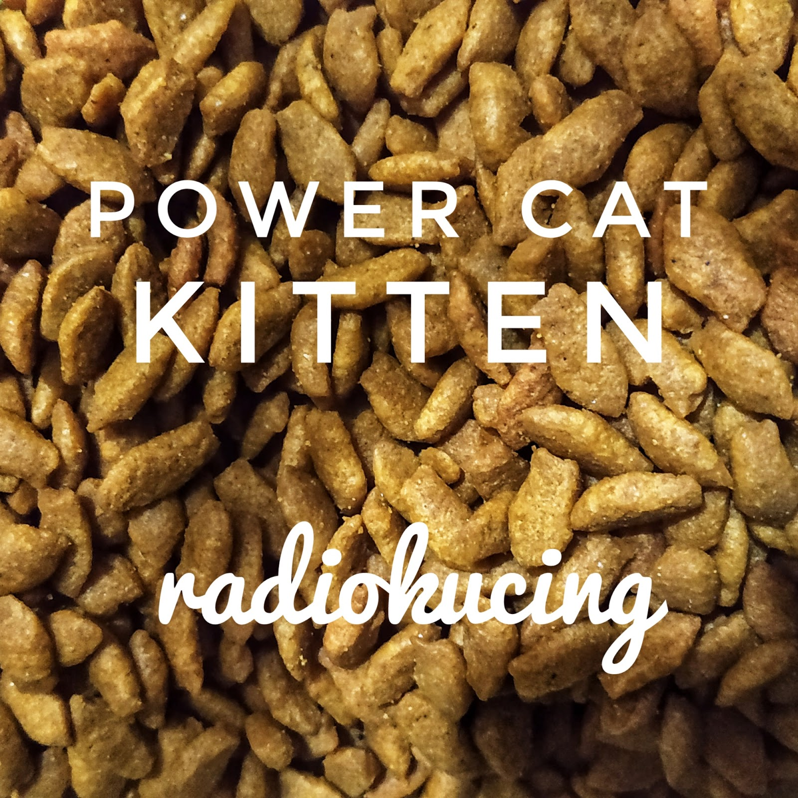 Review Makanan Kucing Power Cat Kitten Memiminalisir Bau Hingga 95 Lho Radiokucing Com