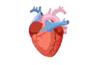 serangan jantung sangat berbahaya