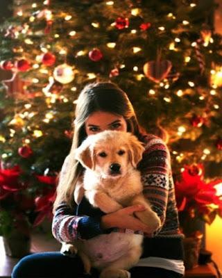 foto tumblr con mascota en navidad