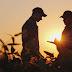 Gestão de pessoas no agronegócio: desafios e perspectivas