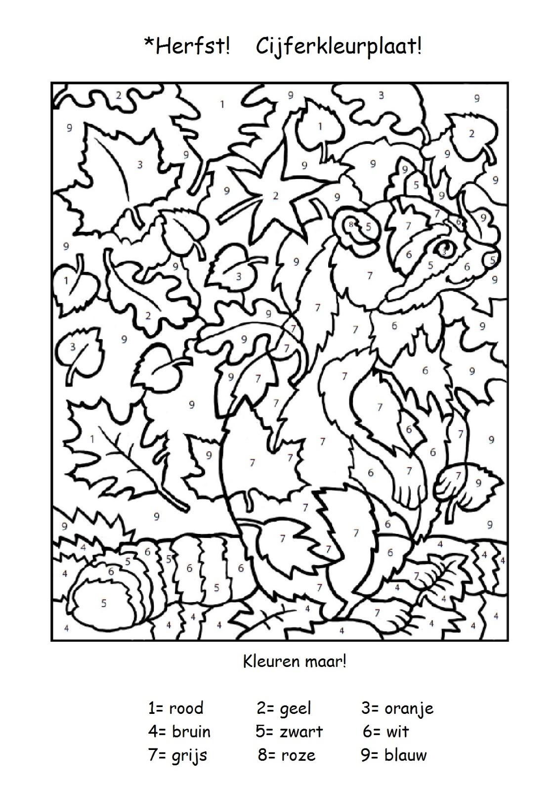 Onderwijs En Zo Voort Thema Eekhoorns Cijferkleurplaat