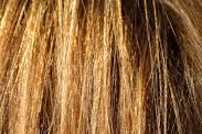 6 Makanan Terbaik Untuk Rambut Sehat