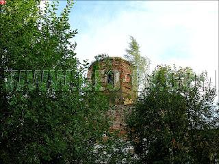 Смоляны. Береза на крыше Свято-Алексеевской церкви