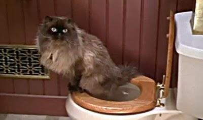 Jinx el gato de Jack - Los padres de ella