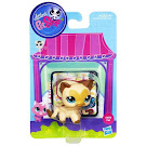 Littlest Pet Shop Singles Siamese (#3573) Pet