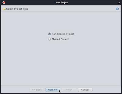 project type on ghidra