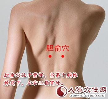 膽俞穴位 | 膽俞穴痛位置 - 穴道按摩經絡圖解 | Source:xueweitu.iiyun.com