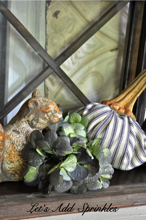 Dried Hydrangea, a squirrel and a ticking pumpkin in a lantern.