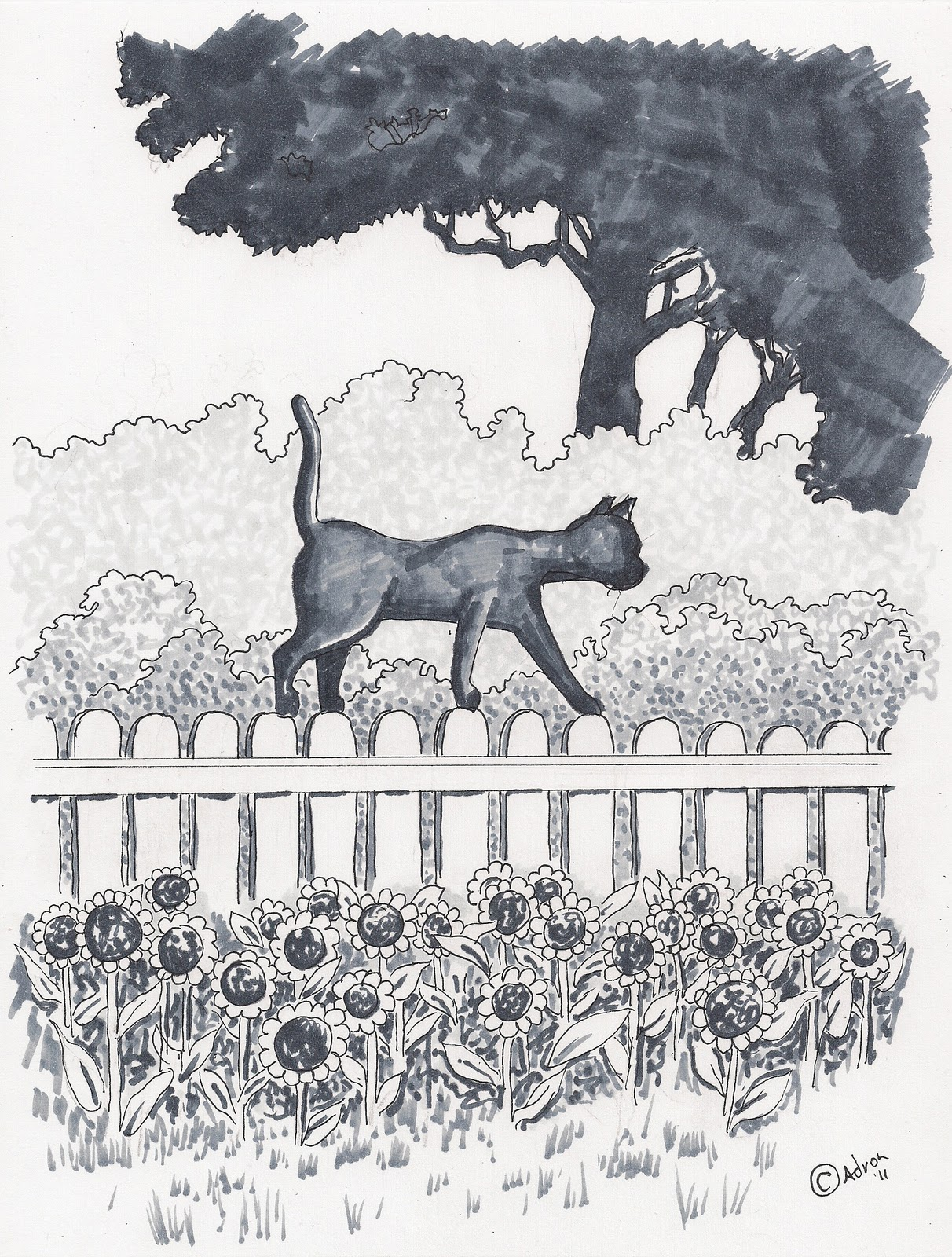 fence drawing. Example Of How To Draw A Cat On Fence. (c) Adron 2011 Fence Drawing