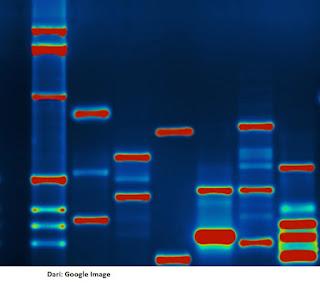 Pengertian DNA Barcoding Untuk Tanaman