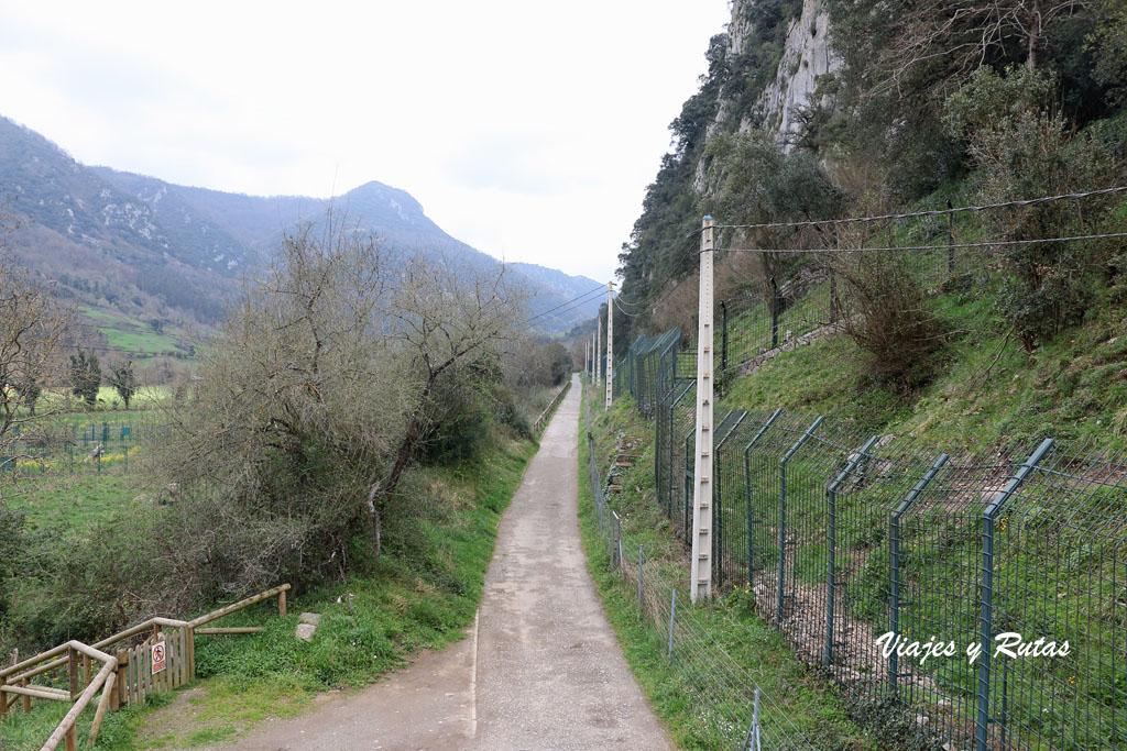 Senda del oso, Asturias