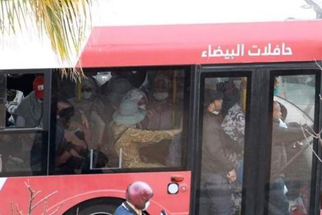 """""""ألزا"""" تتابع خرق """"التباعد"""" داخل حافلات البيضاء"""