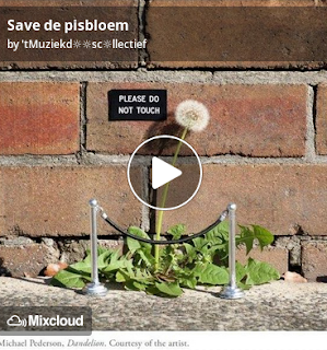 https://www.mixcloud.com/straatsalaat/seev-de-pisbloem/