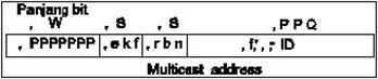 Gambar 6. Struktur Multicast Address