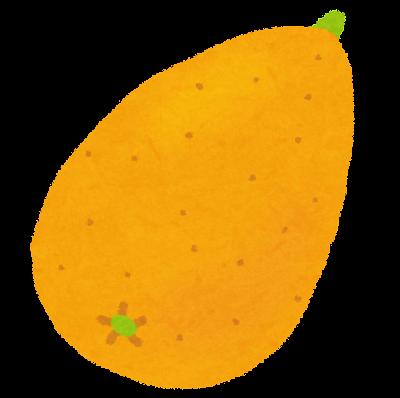 枇杷(びわ)の画像