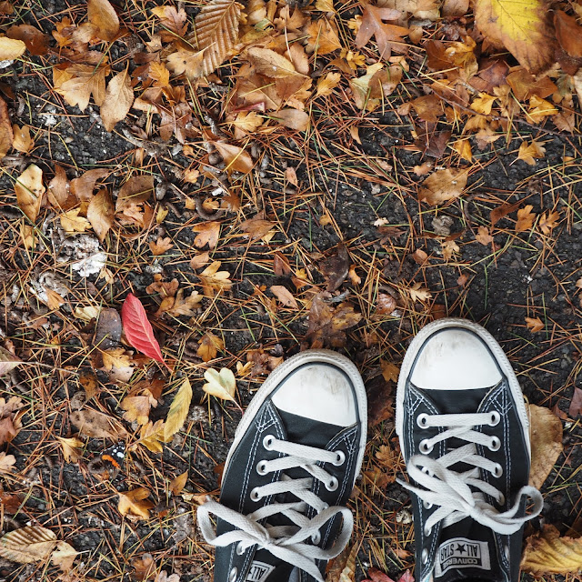 Autumn leaves converse