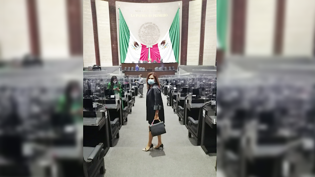El PRI siempre apoyará cualquier ejercicio que fortalezca la democracia del país: Blanca Alcalá