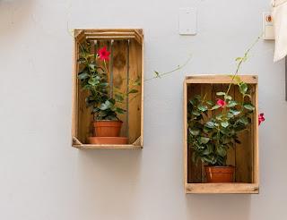 Kotak Kayu Pot Bunga