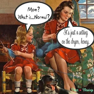 A young white girl in 1960's clothing asks her mother, what is normal. Mother replies, it's just a setting on the dryer