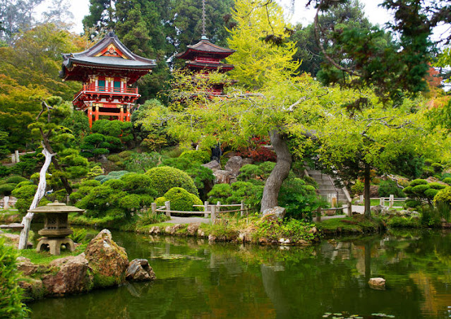 jardim e lago